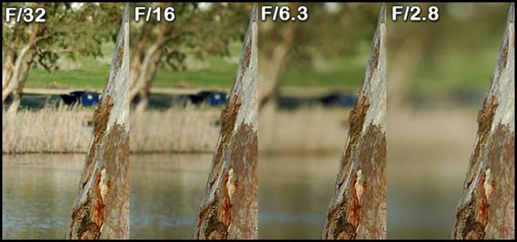 """צמצמים שונים במצלמה דיגיטלית רפלקסית (ניקון DSLR עם עדשה סיגמא 70-200 F/2.8 ב-200 מ""""מ אורך מוקד)"""