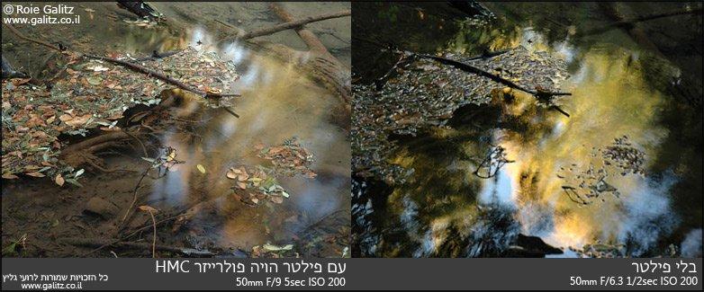 ניתן לראות שהפולרייזר מכניס פחות אור מוחזר מההשתקפות ולכן ניתן להשתמש בחשיפה ארוכה יותר ולקבל פרטים על העלים בנוסף לקרקעית הנחל. צולם בשמורת תל-דן בצפון ישראל