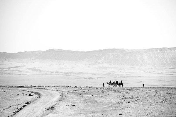 עדשה טלסקופית תעזור לכם להתמקד בנוף האינסופי של המדבר. שיירת גמלים על מצוק מכתש רמון. צלם:נמרוד סונדרס