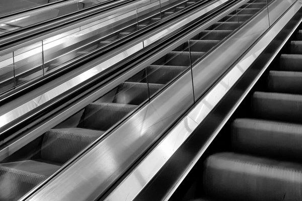 קווים ידועים כאלמנטים חזקים בקומפוזיציה. בשחור לבן הקווים הופכים לנושא של ממש. צלם: אלדד פז